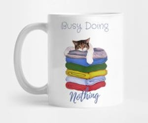 cats, kitty, and busy doing nothing image