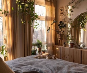 home, bedroom, and cat image