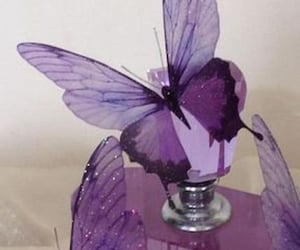 butterfly, aesthetic, and purple image