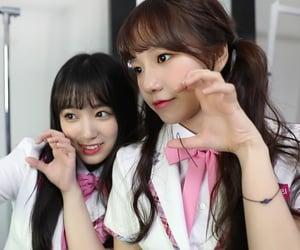 girlgroup, nako, and catgirl image