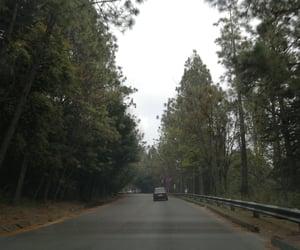 carretera, naturaleza, and paisaje image