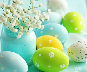 colours, easter, and flowers image