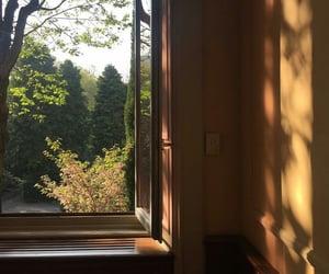 "sunbathe:""https://www.instagram.com/p/Bi4BNbQAvoD/"""