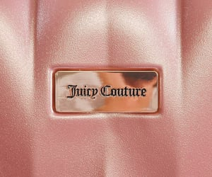 aesthetic, juicy, and juicy couture image