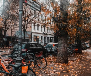 berlin, calle, and autumn image