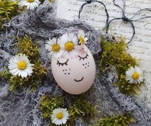 easter, eggs, and huevo image