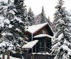 Winter ❄️🥶