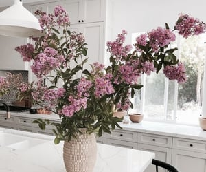 flowers, home, and kitchen image