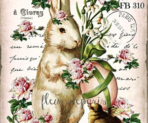 easter, easter bunny, and rabbit image