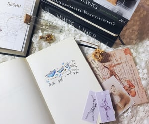 aesthetic, ballet, and books image
