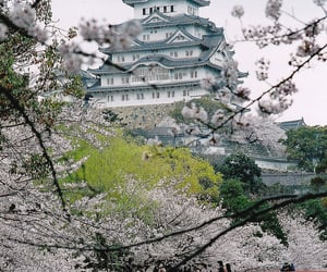 aesthetic, angelic, and japan image