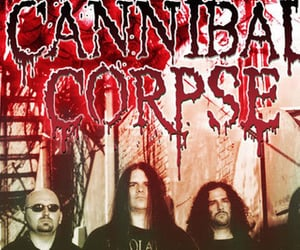 brutal, death metal, and cannibal corpse image