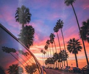 beach, california, and palm trees image