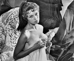 brigitte bardot and BrigitteBardot image