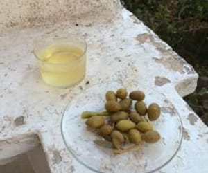 italy, olive, and provence image
