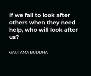 Buddha, life, and words of wisdom image