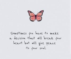 decision, heart, and qotd image