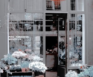 flowers, flower shop, and shop image
