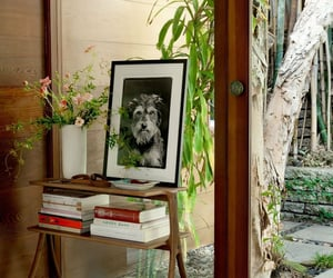 Architectural Digest, indoor outdoor, and dakota johnson house image