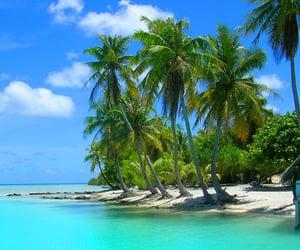 escape, paradise, and beaches image