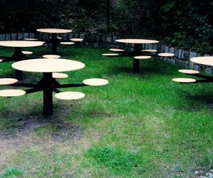 chairs, sit, and grass image