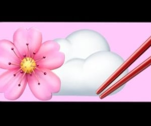 chopsticks, clouds, and flowers image