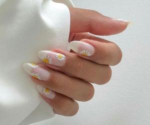 nails, daisy, and nail art image