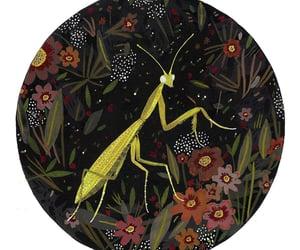 art, illustration, and cricket image