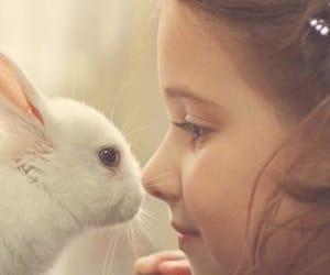 adorable, bunnies, and girl image