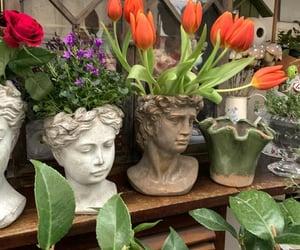 academia, aesthetic, and flowers image