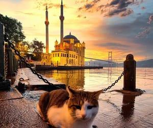 istanbul and beşi̇ktaş ortaköy image