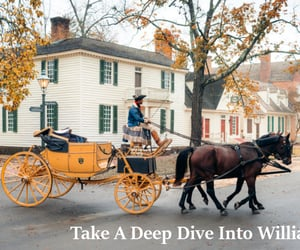 travel guide, travel tips, and travel to williamsburg image