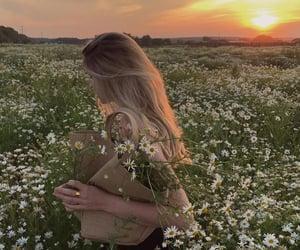 daisy, boho, and flowers image
