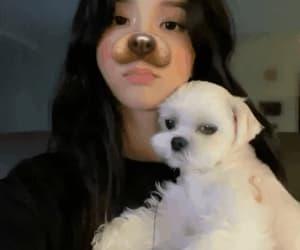 cutie, blackpink jisoo, and jisoo gifs image