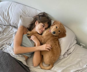goals, beautiful, and dog image