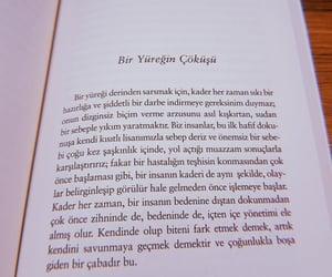 book, stefan zweig, and huji image