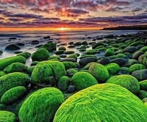 green rocks-iceland image
