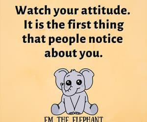 elephant, inspiring, and kawaii image