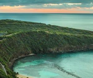 hawaii and nature image