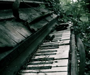 abandoned, piano, and woods image