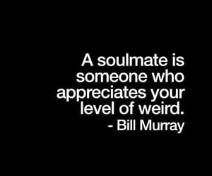quotes, soulmate, and weird image