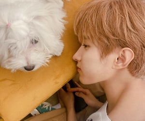 DK, seokmin, and Seventeen image