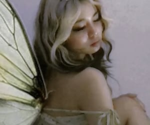 aesthetic, fairy, and wings image