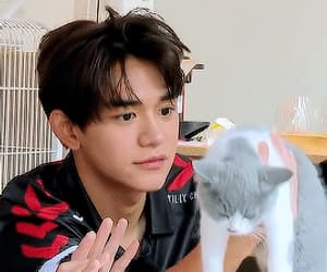 wong yukhei and cats