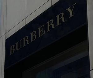 Burberry, fashion, and photography image