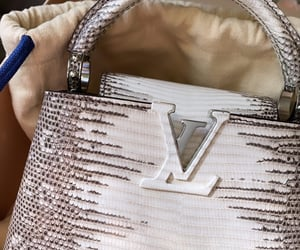 bags, Louis Vuitton, and LV image