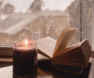 bibliophile, bookish, and reading image