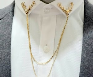 brooch, chain, and collar image