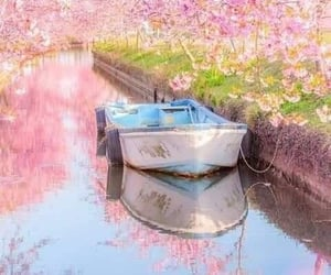 flowers, april, and boat image