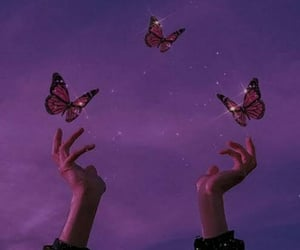 butterfly, purple, and aesthetic image
